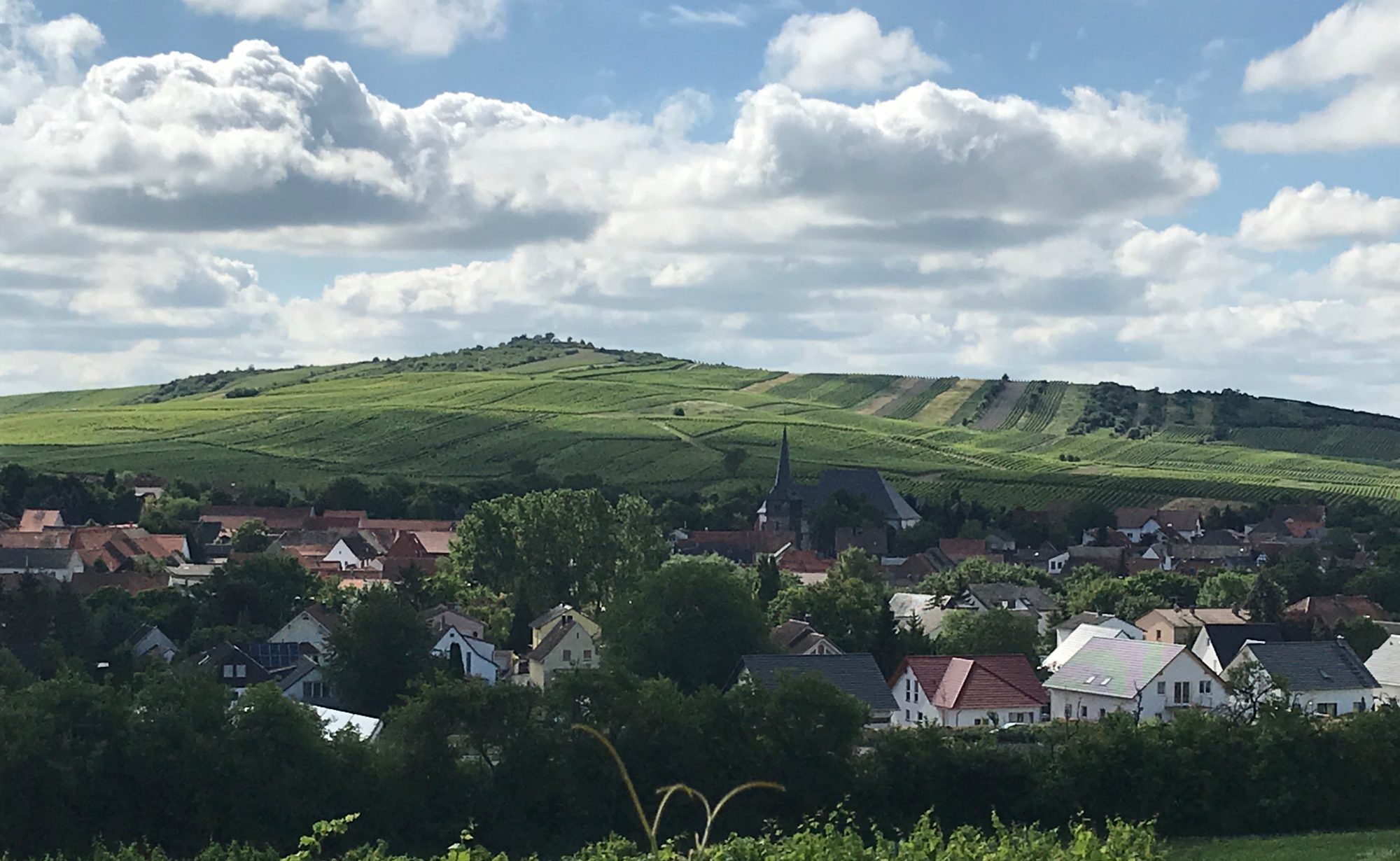 Weingut Berg